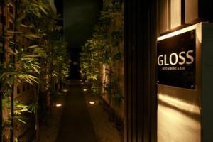 gloss6