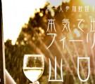 お一人参加歓迎!25~39歳限定!本気で出逢う!フィーリングコン-山口(3/5)